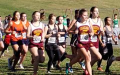Team effort and personal bests key to Graham qualifying eight cross country runners for state