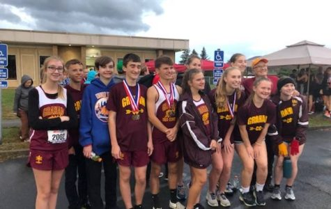 Cross Country runs their hearts out at state